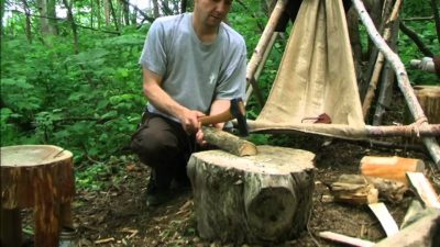 Small Forest Axe Splitting Wood